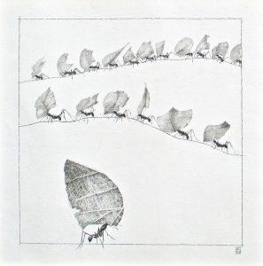 """Anita Kreck, """"Auf Hamstertour"""", Bleistiftzeichnung, 50 x 50 cm, 625 EUR"""