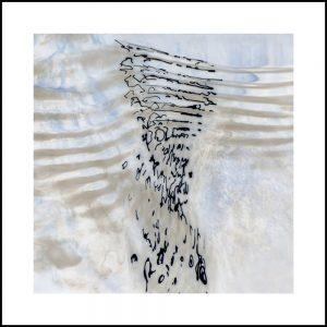 Werner Prinz, Fragment (aus der Serie Wasser-Zeichen), Fotografie, 40 x 40 cm im Rahmen / 50 x 50 cm, 300 €